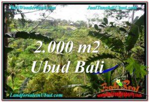 DIJUAL MURAH TANAH di UBUD BALI 20 Are di Ubud Payangan