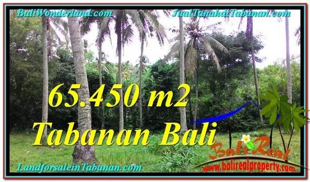 TANAH di TABANAN BALI DIJUAL MURAH 65,450 m2  View laut dan sungai