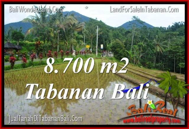 TANAH di TABANAN BALI DIJUAL MURAH TJTB316