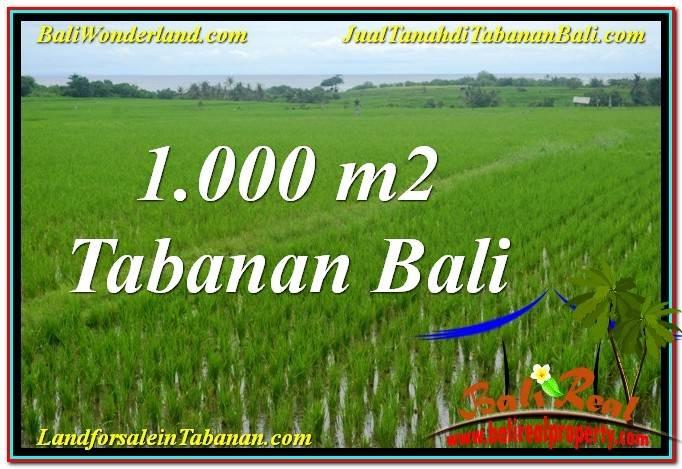 TANAH MURAH  di TABANAN BALI DIJUAL 10 Are View Laut, Gunung dan sawah