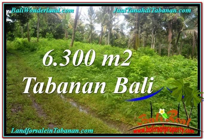 JUAL TANAH di TABANAN Untuk INVESTASI TJTB313