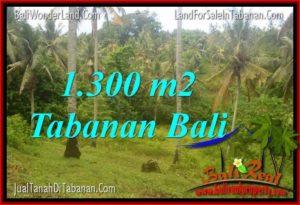 JUAL MURAH TANAH di TABANAN BALI TJTB314