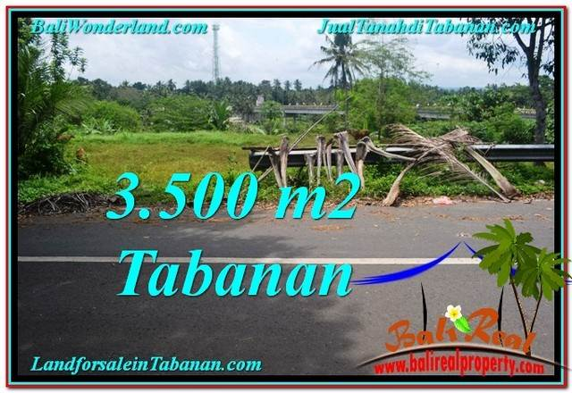 JUAL TANAH di TABANAN 3,500 m2  View kebun