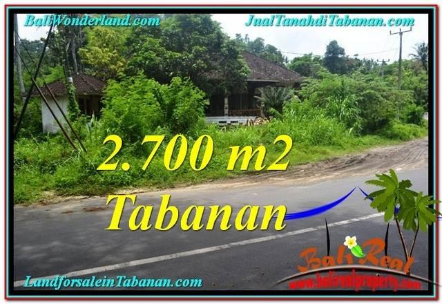 TANAH MURAH JUAL di TABANAN BALI 27 Are View kebun dan sungai