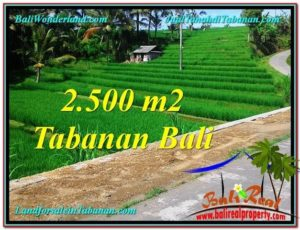 TANAH di TABANAN BALI DIJUAL MURAH 2,500 m2 di Tabanan Penebel