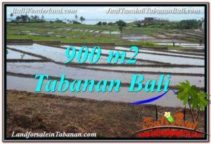 JUAL MURAH TANAH di TABANAN BALI 9 Are View Laut, Gunung dan sawah