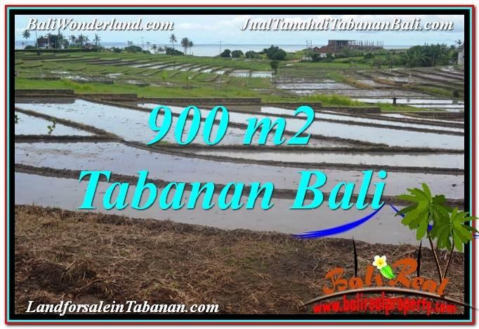 TANAH di TABANAN BALI DIJUAL MURAH 9 Are View Laut, Gunung dan sawah