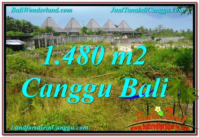 TANAH MURAH di CANGGU DIJUAL 14.8 Are di Canggu Pererenan
