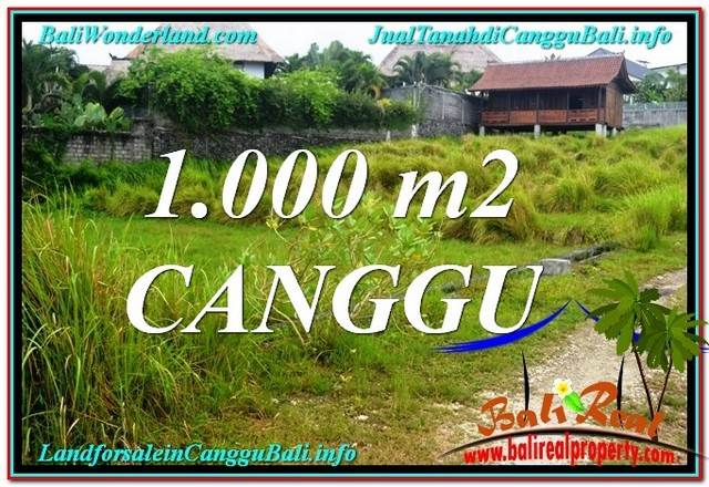 JUAL TANAH di CANGGU 1,000 m2 View sawah, sungai, laut