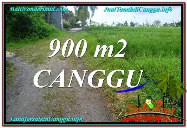 INVESTASI PROPERTI, TANAH DIJUAL di CANGGU BALI TJCG215