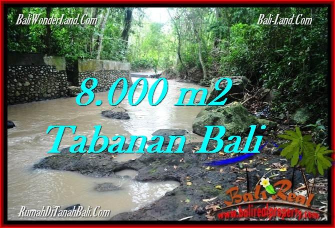 TANAH MURAH JUAL   TABANAN 8,000 m2  View kebun dan sungai