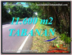 INVESTASI PROPERTI, DIJUAL MURAH TANAH di TABANAN BALI TJTB327