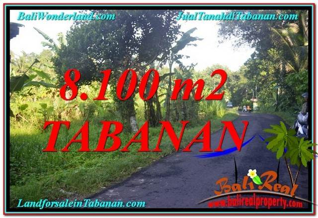 INVESTASI PROPERTI, DIJUAL MURAH TANAH di TABANAN BALI TJTB329