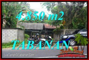 JUAL MURAH TANAH di TABANAN BALI 48.5 Are View Kebun