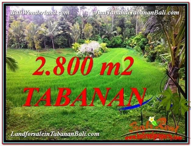 JUAL MURAH TANAH di TABANAN BALI 28 Are View  sawah