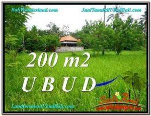 JUAL TANAH di UBUD BALI 2 Are View Kebun Link Villa