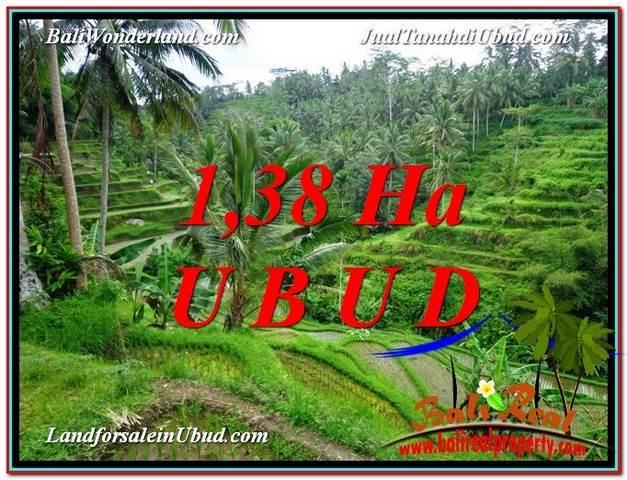 JUAL TANAH di UBUD BALI 13,800 m2  View Sawah dan tebing  link Villa