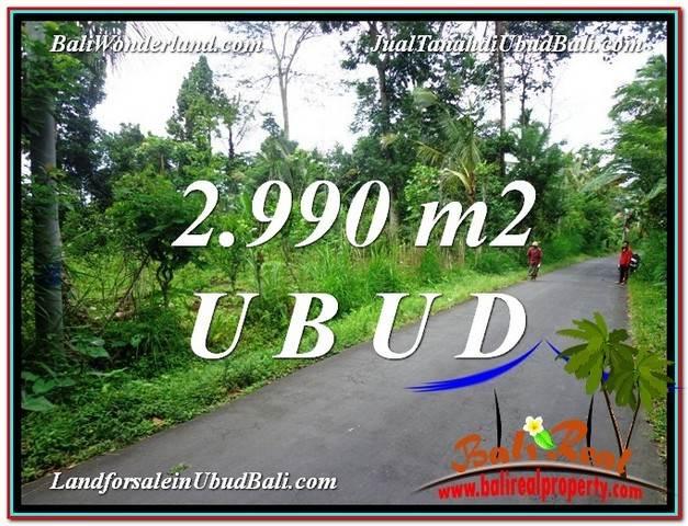 JUAL MURAH TANAH di UBUD BALI 2,990 m2  View kebun dan Tebing