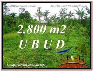 TANAH JUAL MURAH UBUD 2,800 m2 View kebun