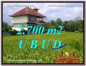 TANAH di UBUD DIJUAL MURAH Untuk INVESTASI TJUB595
