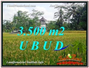 TANAH JUAL MURAH UBUD 3,500 m2 View Sawah link Villa