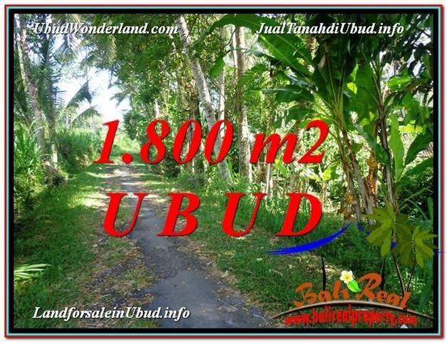 JUAL TANAH MURAH di UBUD TJUB597