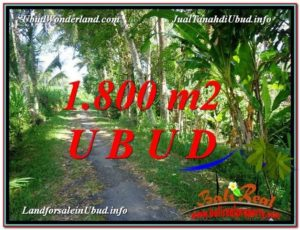 TANAH MURAH JUAL UBUD 1,800 m2 View Sungai dan Tebing link Villa