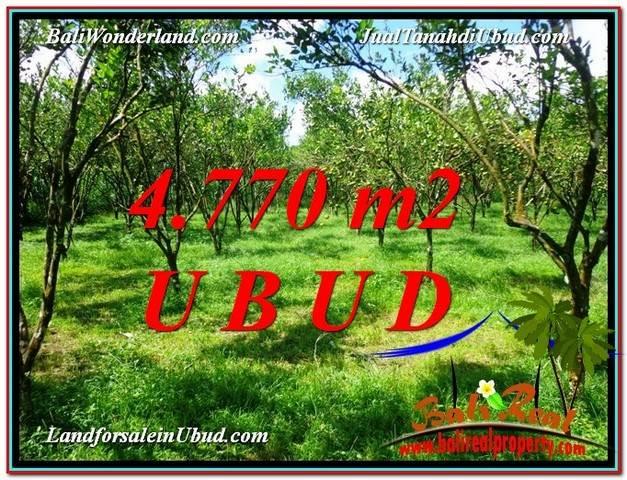 TANAH di UBUD DIJUAL 4,770 m2 di Ubud Tegalalang