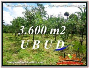 JUAL TANAH di UBUD BALI 3,600 m2 View kebun