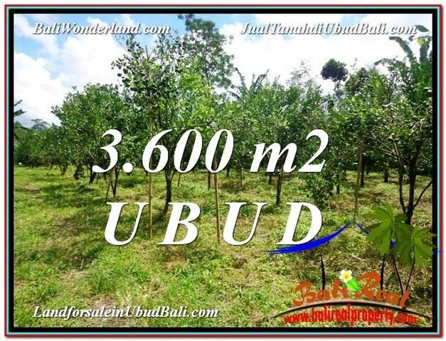 TANAH MURAH DIJUAL di UBUD BALI 3,600 m2 di Ubud Tegalalang
