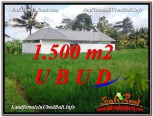 TANAH DIJUAL MURAH di UBUD Untuk INVESTASI TJUB600