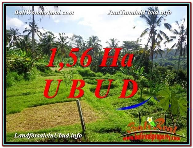 TANAH MURAH DIJUAL di UBUD BALI 156 Are di Ubud Payangan