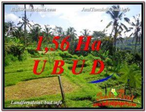 JUAL TANAH MURAH di UBUD Untuk INVESTASI TJUB601
