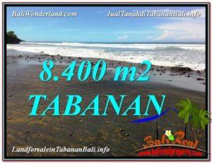 JUAL MURAH TANAH di TABANAN BALI 84 Are View laut dan Lingkungan Villa