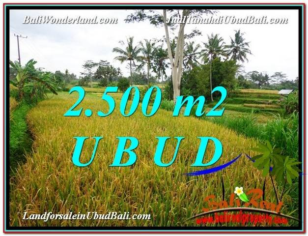 TANAH di UBUD JUAL MURAH 2,500 m2  View Sawah link Villa dan Restorant