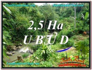 TANAH di UBUD DIJUAL MURAH Untuk INVESTASI TJUB579