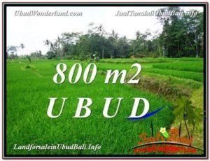 TANAH MURAH DIJUAL di UBUD BALI Untuk INVESTASI TJUB581