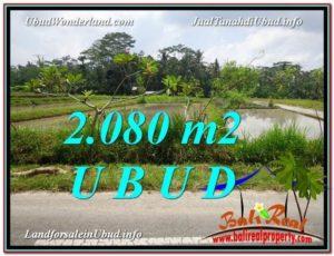 TANAH MURAH di UBUD BALI 2,080 m2 di Ubud Pejeng