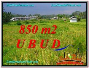 JUAL TANAH di UBUD BALI 850 m2 View Sawah link Villa