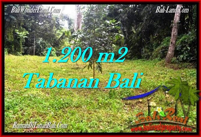 JUAL TANAH MURAH di TABANAN 1,200 m2  View kebun