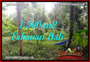 TANAH di TABANAN JUAL MURAH 1,500 m2 View kebun