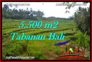 JUAL TANAH di TABANAN BALI 55 Are di Tabanan Penebel