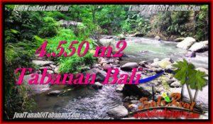JUAL TANAH MURAH di TABANAN 4,550 m2 View kebun dan sungai