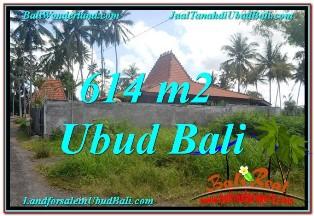 JUAL MURAH TANAH di UBUD BALI 614 m2  View kebun lingkungan Villa