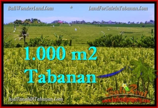TANAH MURAH JUAL di TABANAN BALI 1,000 m2  View sawah, gunung