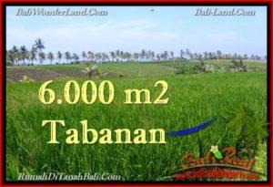 JUAL TANAH MURAH di TABANAN Untuk INVESTASI TJTB267