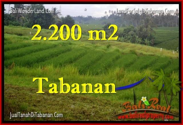 TANAH di TABANAN BALI DIJUAL MURAH TJTB269