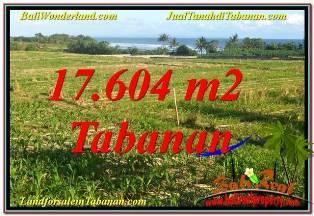 TANAH MURAH DIJUAL di TABANAN BALI Untuk INVESTASI TJTB342