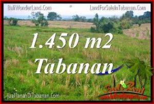 TANAH MURAH di TABANAN BALI 1,450 m2 di Tabanan Selemadeg
