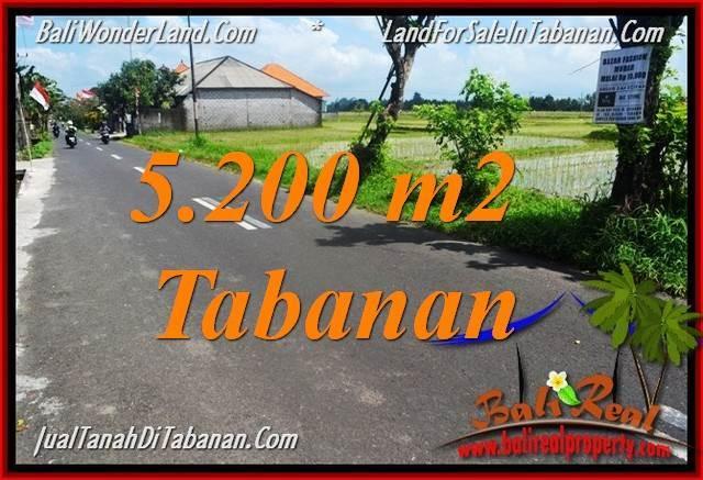 TANAH di TABANAN BALI DIJUAL MURAH 5,200 m2 di Tabanan Kediri